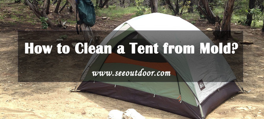 How to Clean a Tent from Mold?