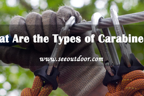What Are the Types of Carabiners?