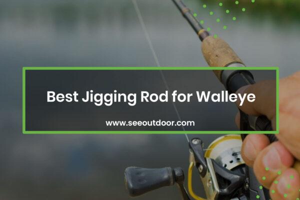 Jigging Rod