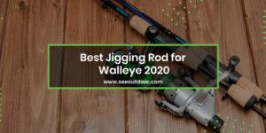 Best Jigging Rod for Walleye 2020