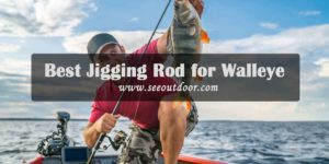Best-Jigging-Rod-for-Walleye