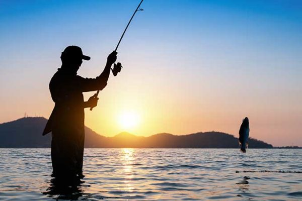 How to Choose a Fishing Rod
