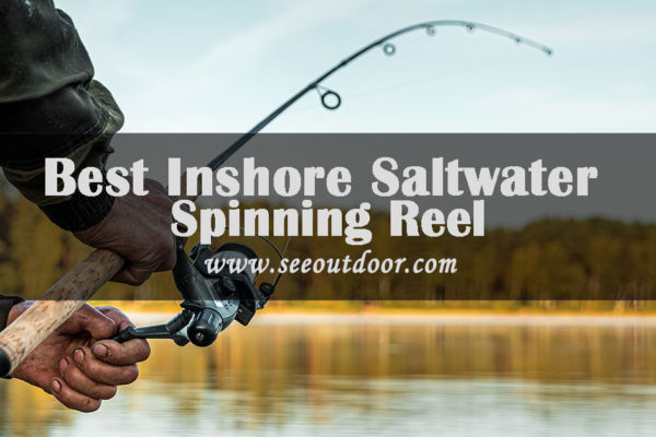 Best-Inshore-Saltwater-Spinning-Reel
