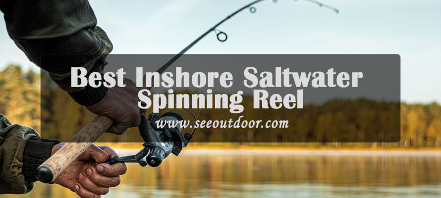 Best Inshore Saltwater Spinning Reel