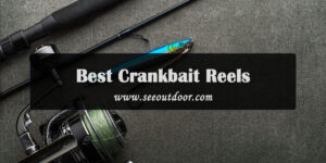 10-Best-Crankbait-Reels-to-Enjoy-Fishing