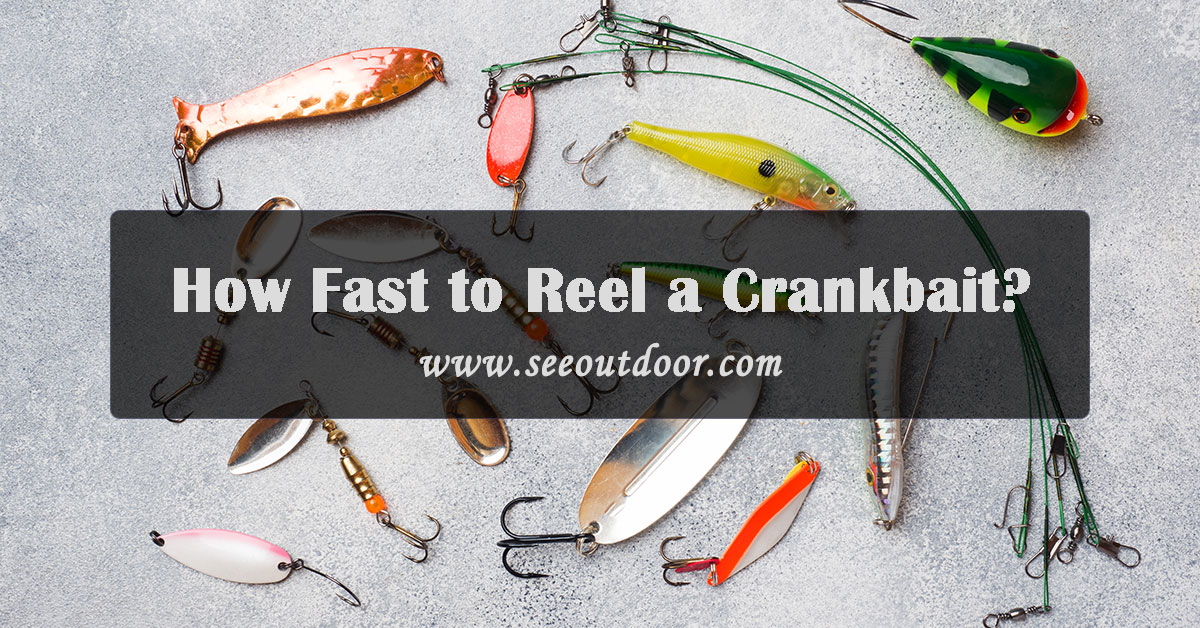 How-Fast-to-Reel-a-Crankbait
