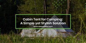 Cabin Tent for Camping A Simple yet Stylish Solution