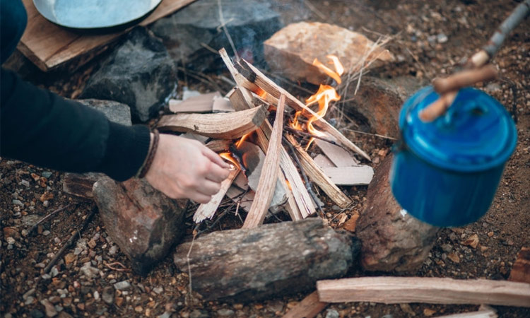 Best Places to Find Cheap Firewood for Camping